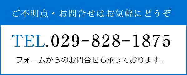 TEL:0259-828-1875